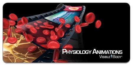 physio_anims_badge