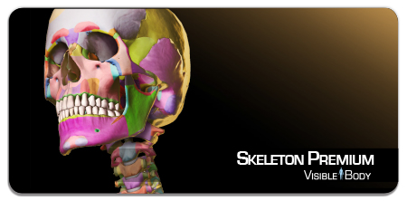 skeleton_badge