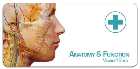 anatomy_function_badge