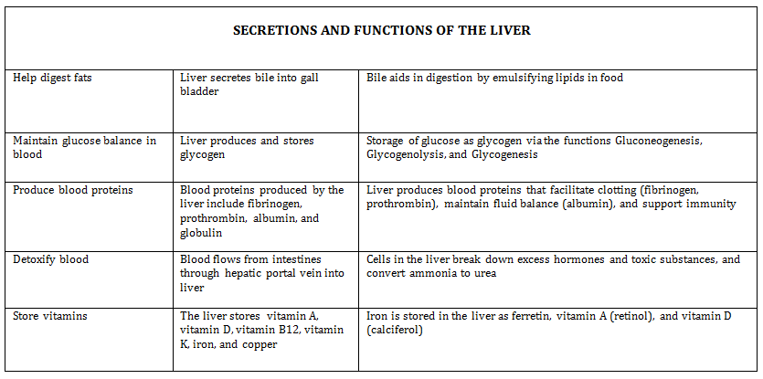 Liver Diagram And Functions - Block And Schematic Diagrams •