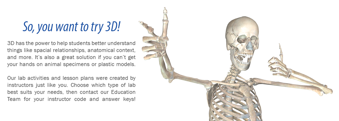 Free Ar And Interactive 3d Anatomy Labs And Lesson Plans