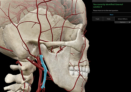 Visible Body apps allow students to work through 3D dissection quizzes