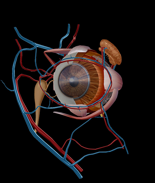 ai-in-medicine-eye