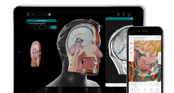 Human Anatomy Atlas is available on multiple platforms and devices.