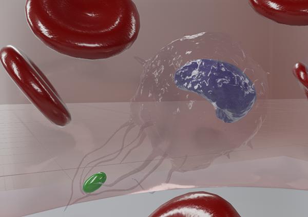 wbc-monocyte-active-ps