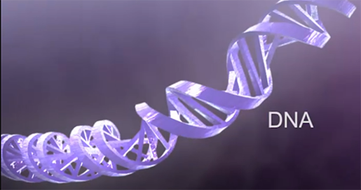 dna-double-helix-structure