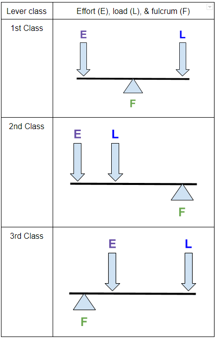 classes-of-levers-2