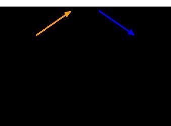 nervous-system-divisions-afferent-efferent-pns