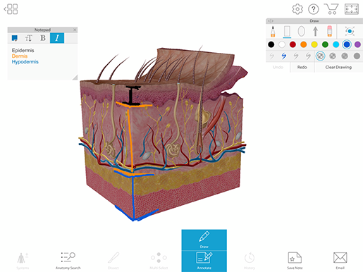 3d-draw-notepad-skin-layers