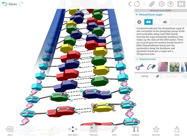 vbio-preview-screenshot-dna-molecular-web