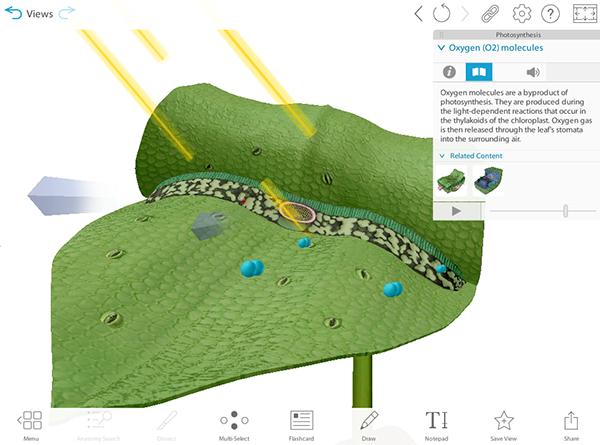 vbio-preview-screenshot-photosynthesis-web