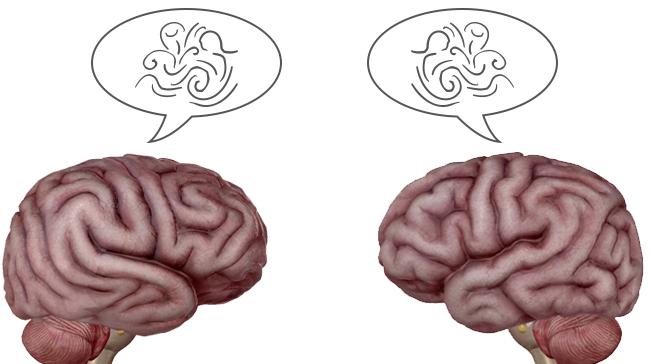 Brain-to-Brain-Communication-BBI.png