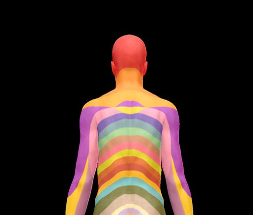 spinal-nerves-dermatomes-back