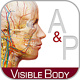 anatomy_and_physiology_160