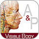 anatomy_and_physiology_80