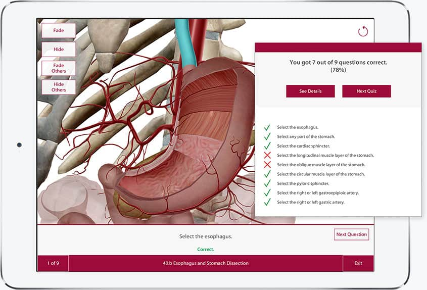 Anatomy & Physiology contains quizzes to help assess learning progress