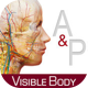 Anatomy & Physiology app for higher education courses