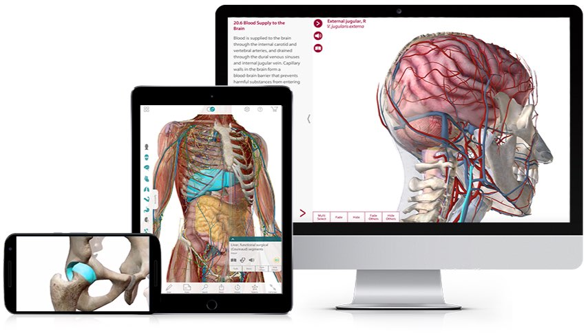 Visible Body's custom 3D apps for pharma and med-device companies help showcase products and assist sales demos