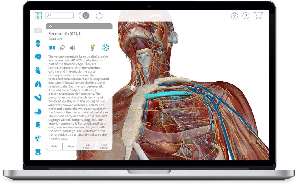 Human Anatomy Atlas - Visual 3D gross and micro anatomy atlas