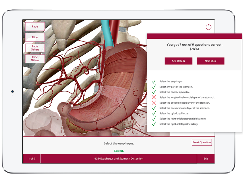 Learning assessment is made easy with interactive quiz questions right on the 3D models