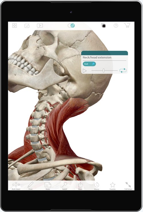Visible Body - Browse anatomy, physiology, and pathology apps
