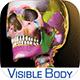 Download the Skeleton Premium app