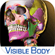 Learn more about the Skeleton Premium app
