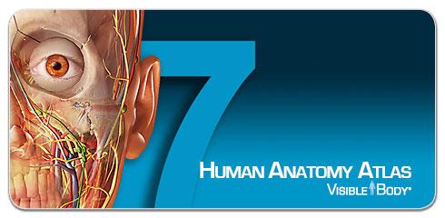 banner_human-anatomy-atlas-2