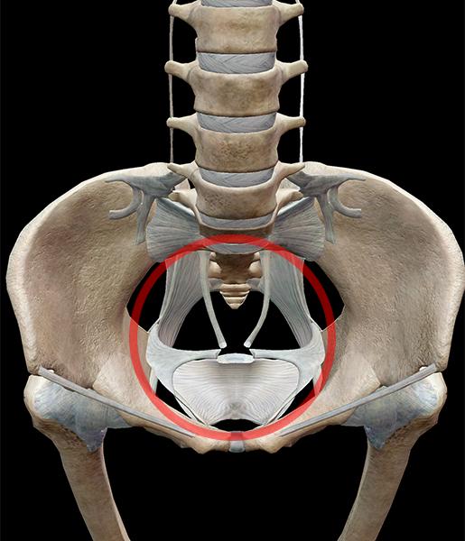 hip-bones-hole
