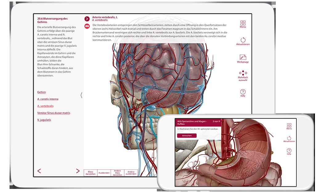 ap-product page-phone tablet-de