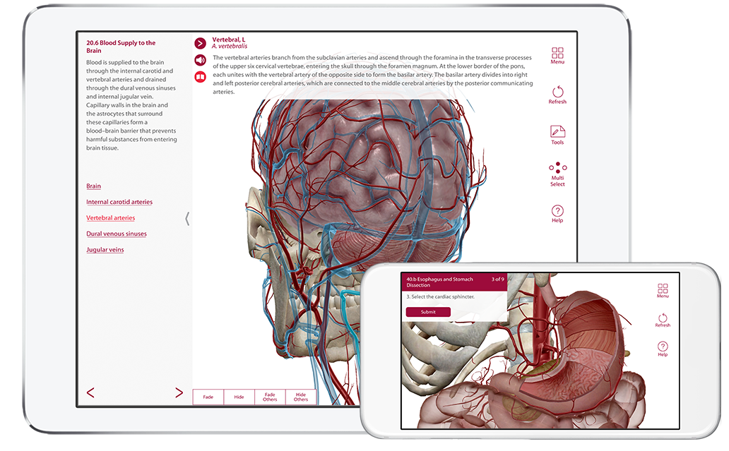 ap-product page-phone tablet-en