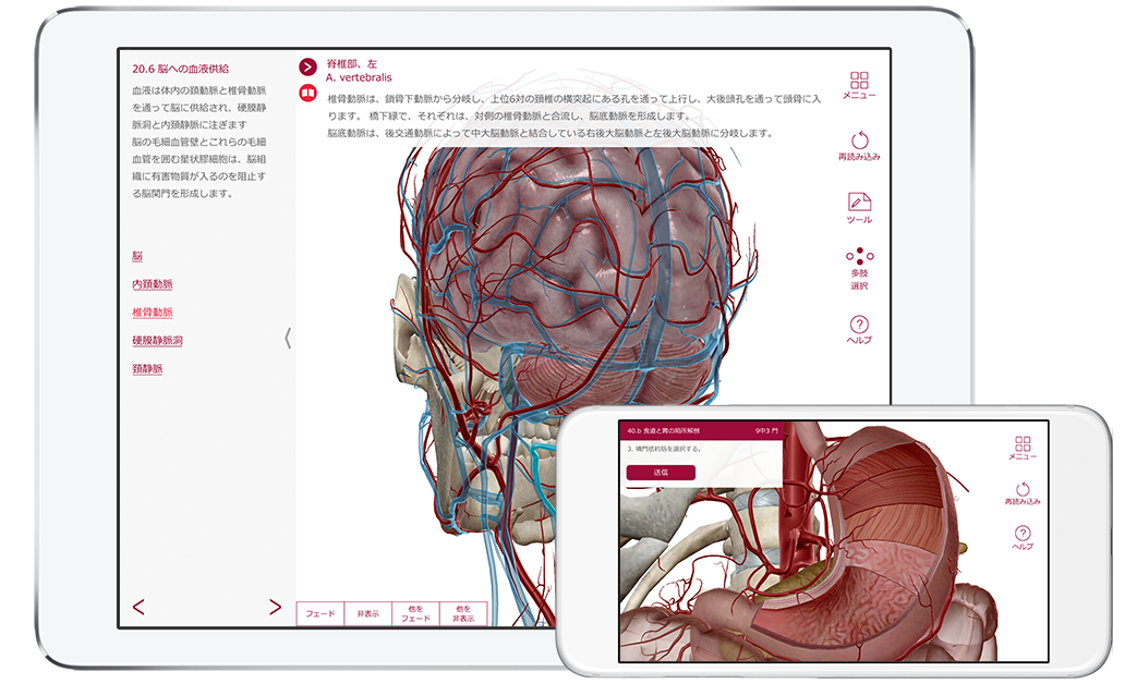 ap-product page-phone tablet-ja