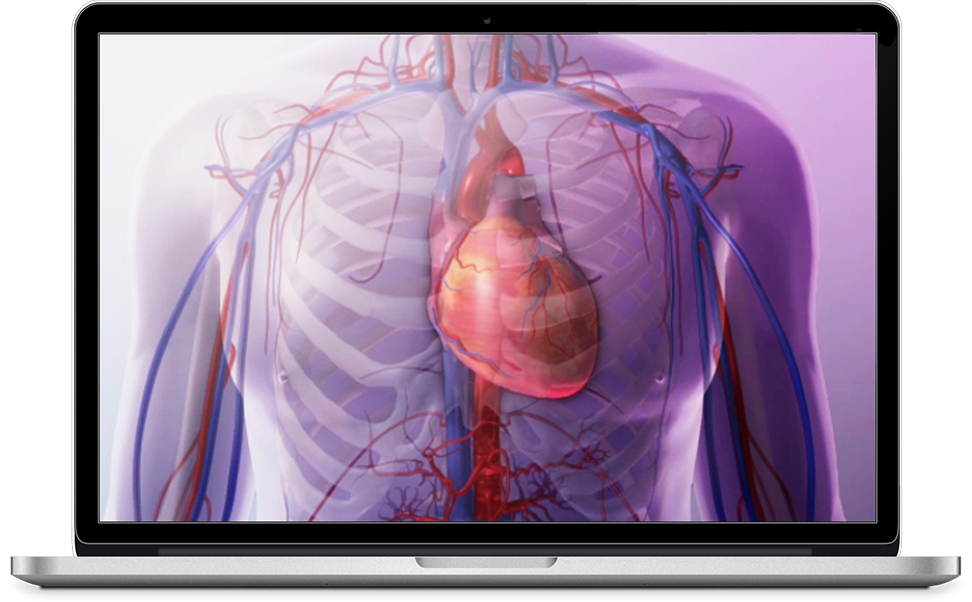 Watch a demo for Heart and Circulatory Premium for PC, Mac, iOS