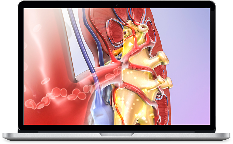 Visible Body's Physiology Animations for iOS, PC, and Mac