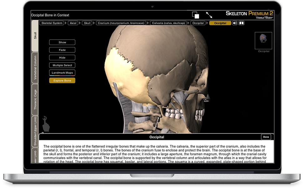 Watch a demo for Skeleton Premium for iOS, Android, PC and Mac
