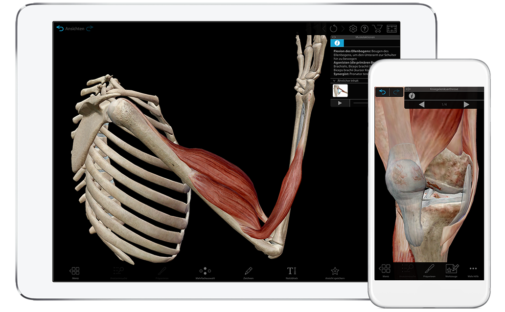 Watch a demo for Muscle Premium for iOS and Android