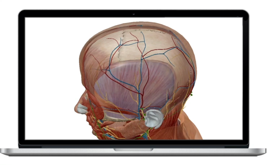 visible-body-3d-human-anatomy-apps-home-poster