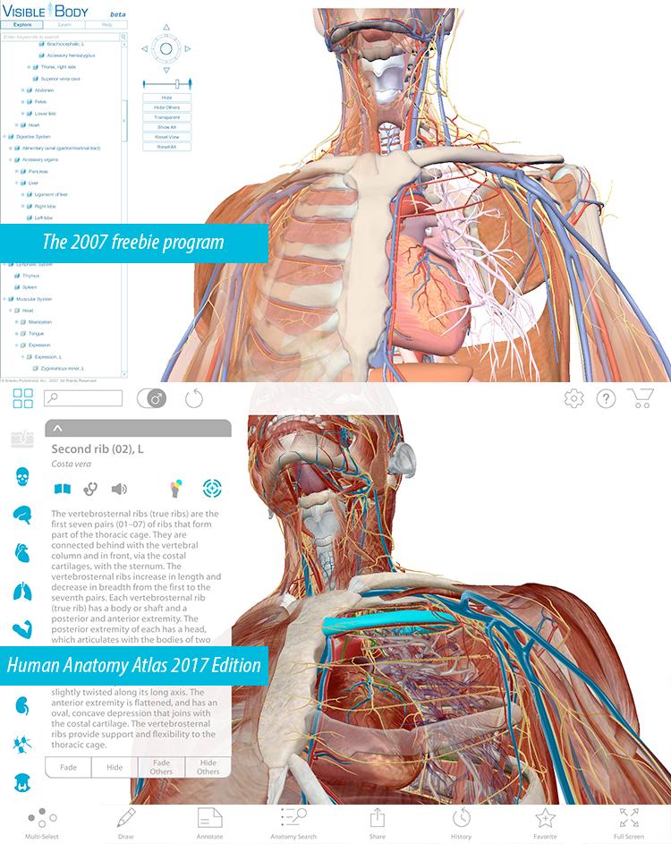 Großzügig Kapitel 1 Einführung In Der Menschlichen Anatomie Und ...