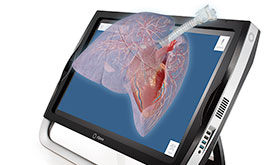 Human Anatomy Atlas for zSpace