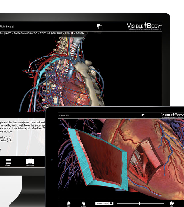 Visible Body's Heart & Circulatory Premium in supported devices