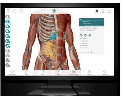 Human Anatomy Atlas PC Update