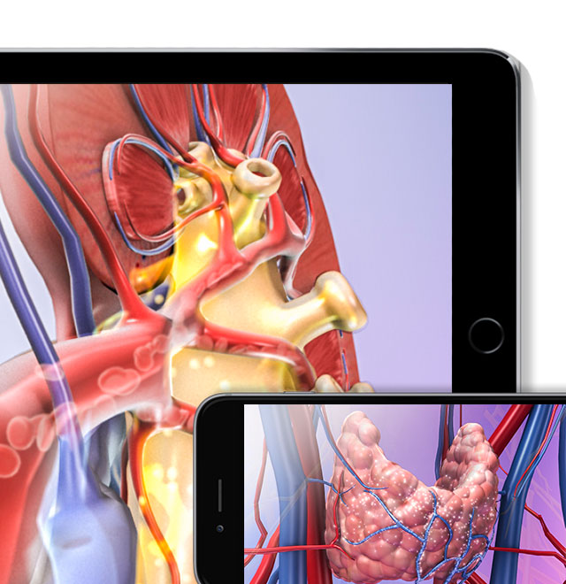 Visible Body's Physiology Animations on multiple devices