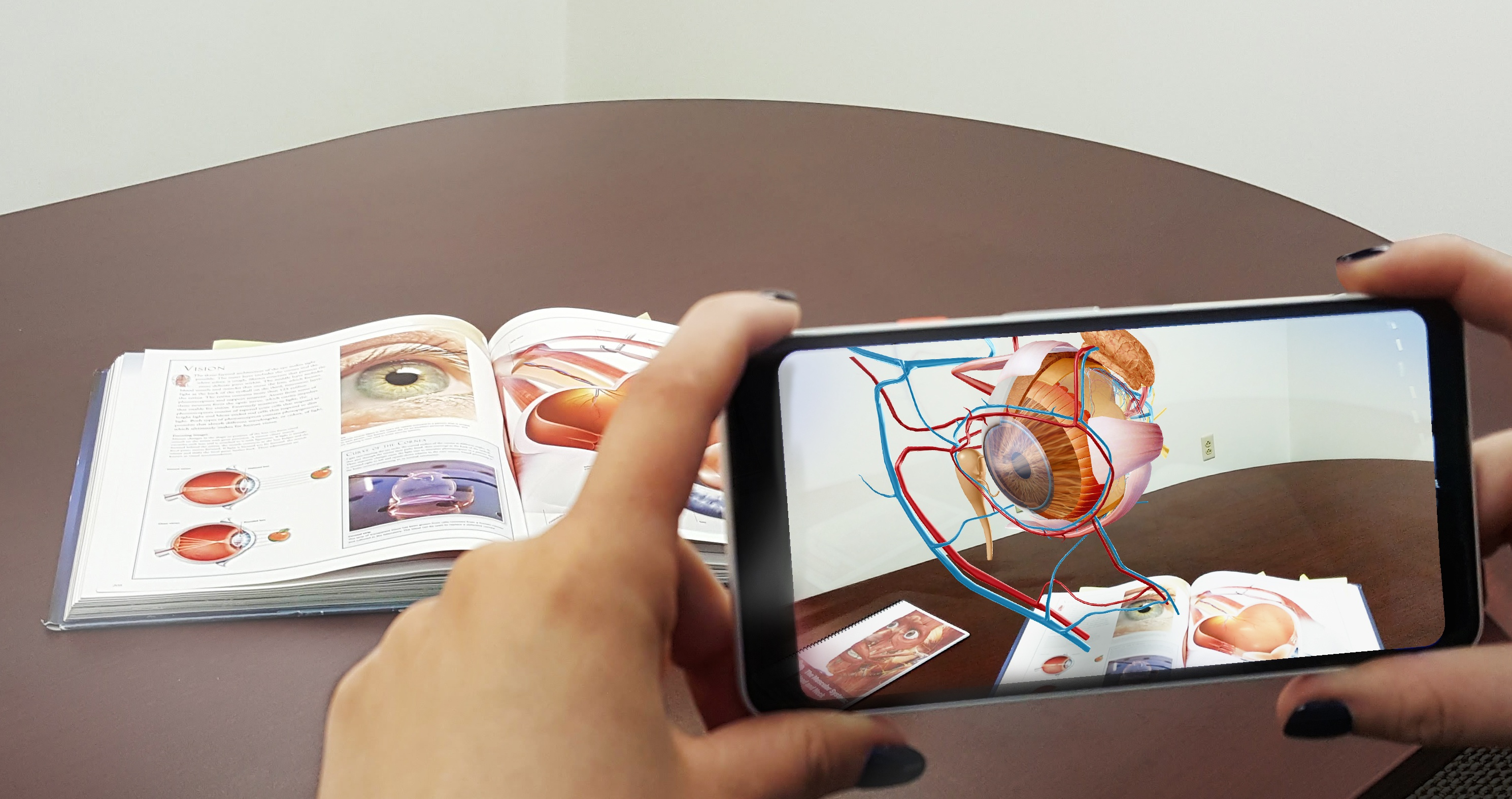Augmented Reality Experience Available for Anatomy Lab Teaching and ...
