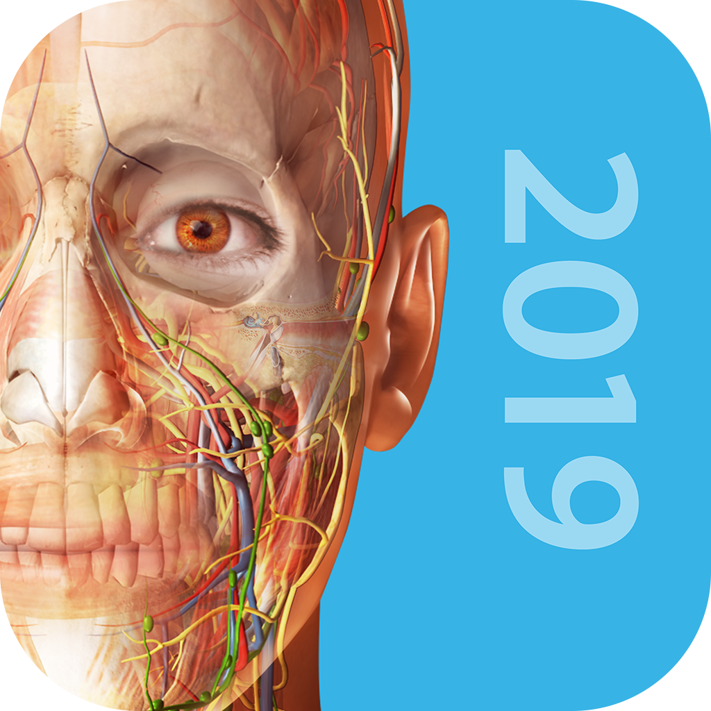 Visible Body Releases Human Anatomy Atlas 2019 For Ios And Android