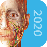 Visible Body's Human Anatomy Atlas 2020 Edition