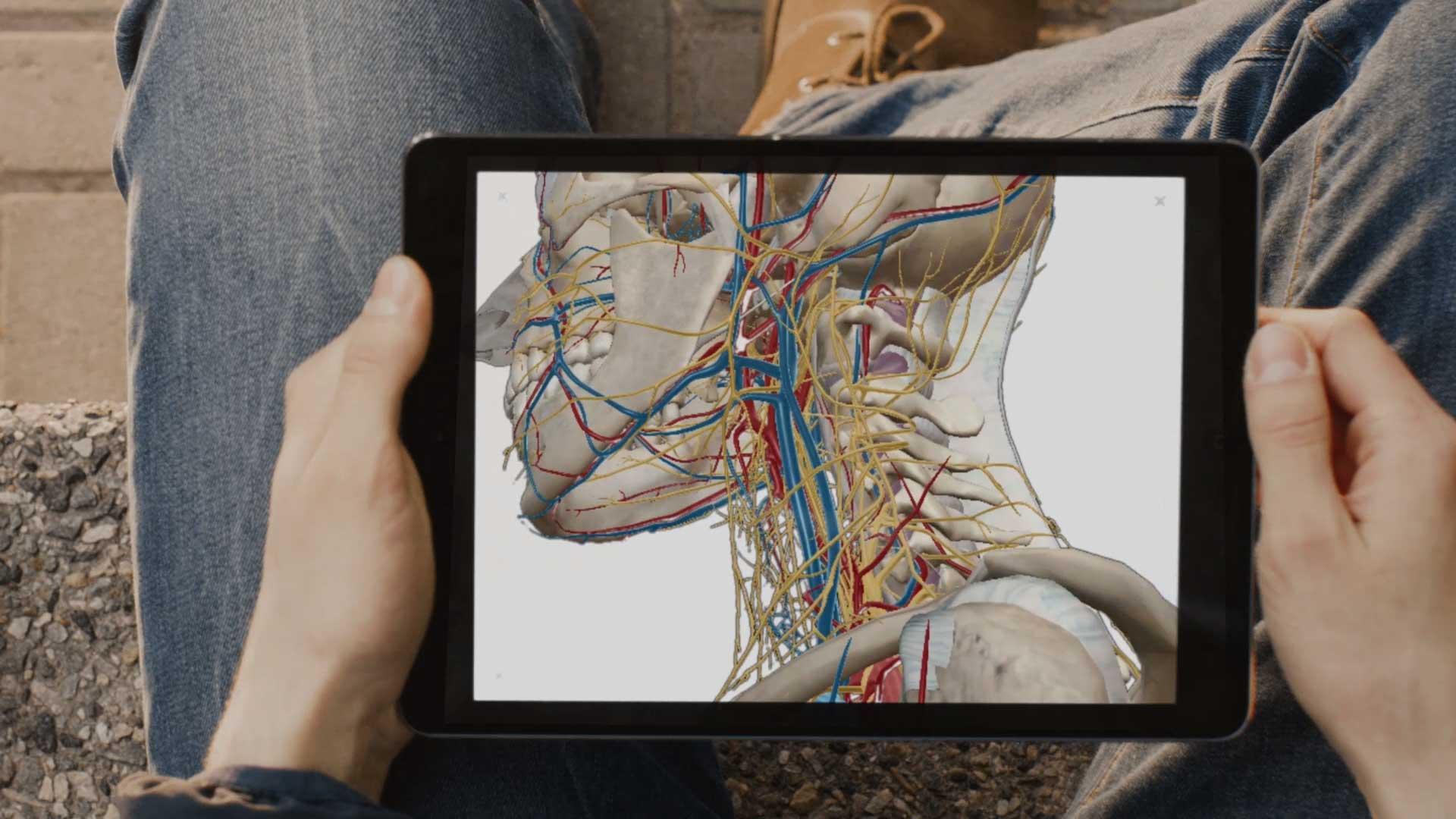 Visible Body Anatoma Virtual Para Observar El Interior Del Cuerpo