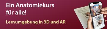 Lernumgebung in 3D und AR