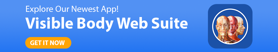 New! Visible Body Web Suite