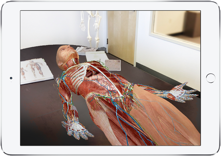 Human Anatomy Atlas showing 3D model prone on desk in augmented reality