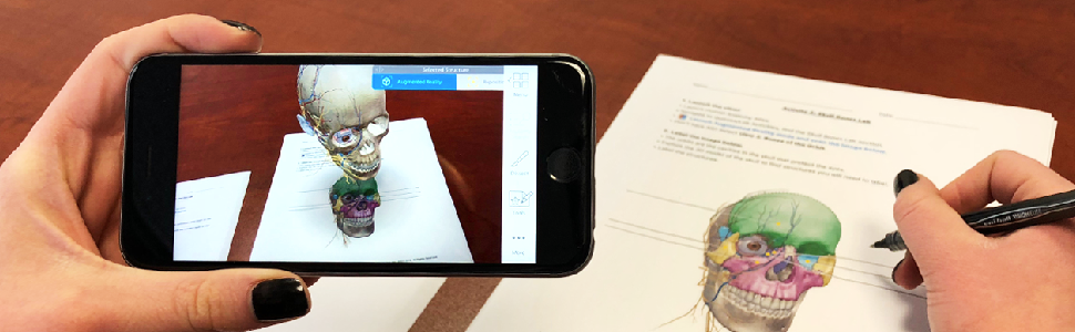 A student using Visible Body's Augmented Reality on their phone to complete a lab activity